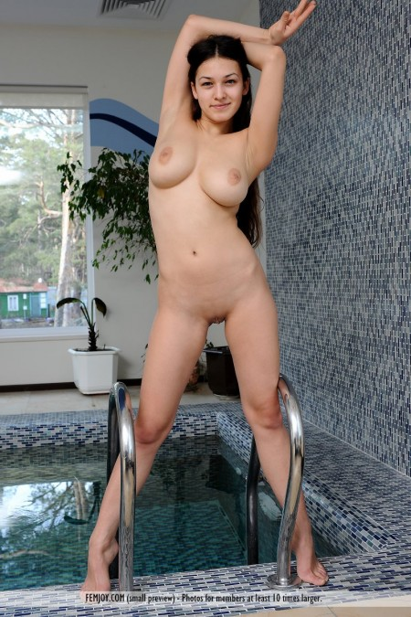 Sofie A-private swimming pool