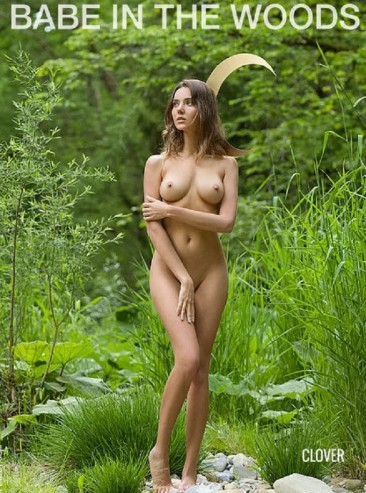 Clover A(Mamngo)-BABE IN THE WOODS